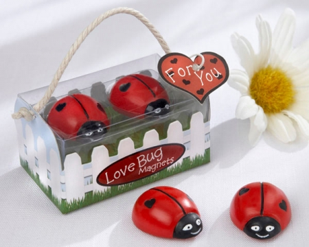 love-bug-ladybug-magnets